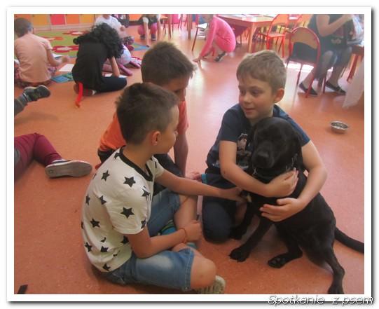 spotkanie z psem